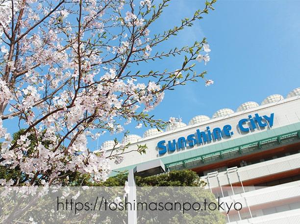 【池袋駅】4月4日から開催「お花見フェアinサンシャインシティ」が楽しそう!これぞ都会のお花見。のイメージ