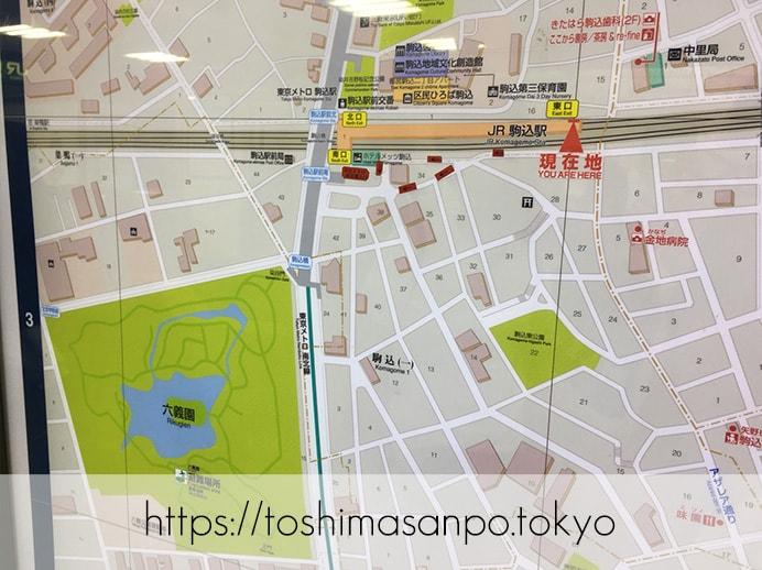 【駒込駅】歴史を学ぶいい日にしよう。和歌山市を模した江戸時代の庭園「六義園」で涼をとろう。の駒込駅周辺マップ