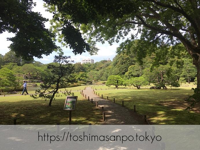 【駒込駅】歴史を学ぶいい日にしよう。和歌山市を模した江戸時代の庭園「六義園」で涼をとろう。の六義園の庭園内1