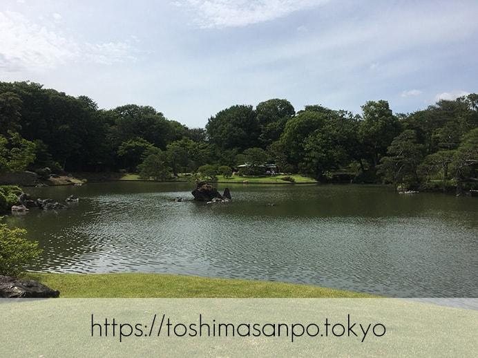 【駒込駅】歴史を学ぶいい日にしよう。和歌山市を模した江戸時代の庭園「六義園」で涼をとろう。の六義園の庭園内3