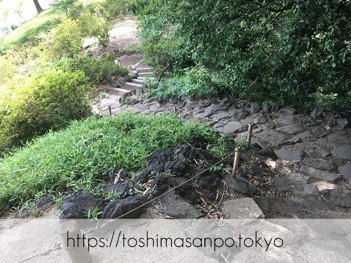 【駒込駅】歴史を学ぶいい日にしよう。和歌山市を模した江戸時代の庭園「六義園」で涼をとろう。の六義園の藤代峠2