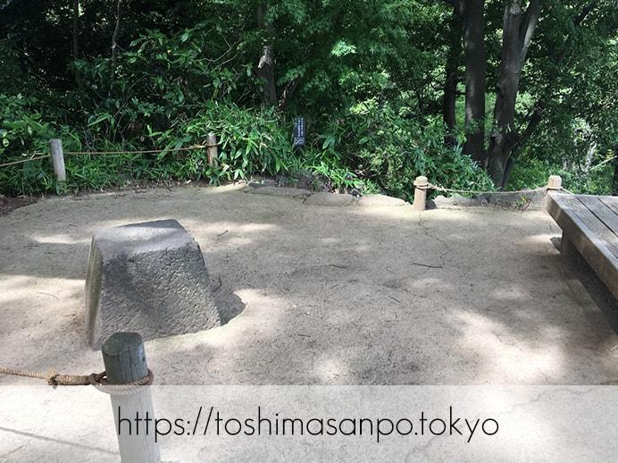 【駒込駅】歴史を学ぶいい日にしよう。和歌山市を模した江戸時代の庭園「六義園」で涼をとろう。の六義園の藤代峠3