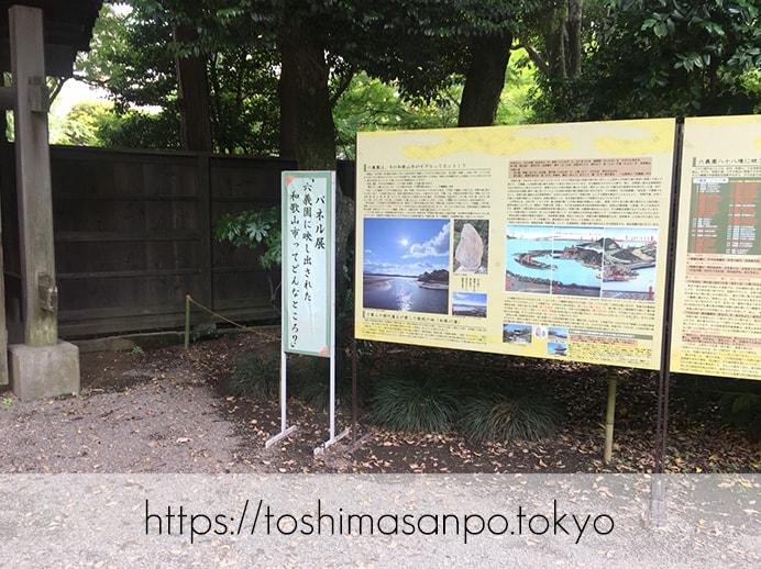 【駒込駅】歴史を学ぶいい日にしよう。和歌山市を模した江戸時代の庭園「六義園」で涼をとろう。の六義園の展示物1