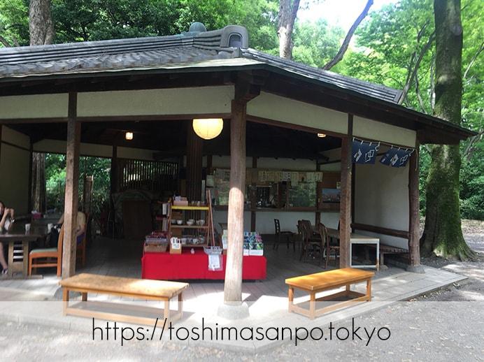 【駒込駅】歴史を学ぶいい日にしよう。和歌山市を模した江戸時代の庭園「六義園」の涼をとろう。の六義園の吹上茶屋2