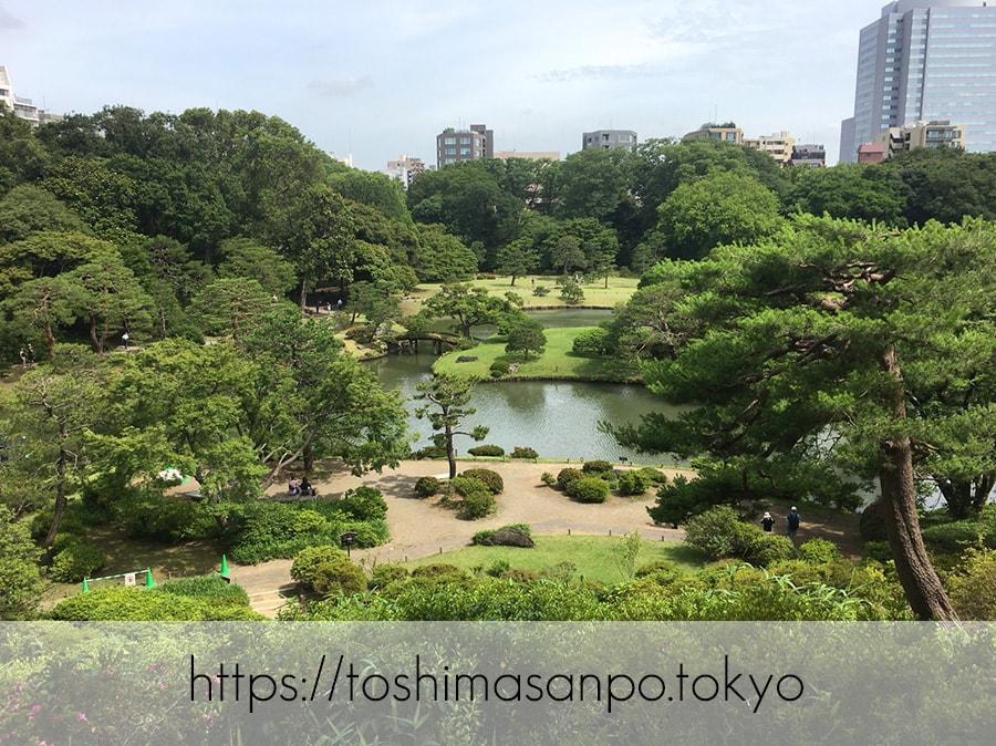 【駒込駅】歴史を学ぶいい日にしよう。和歌山市を模した江戸時代の庭園「六義園」で涼をとろう。
