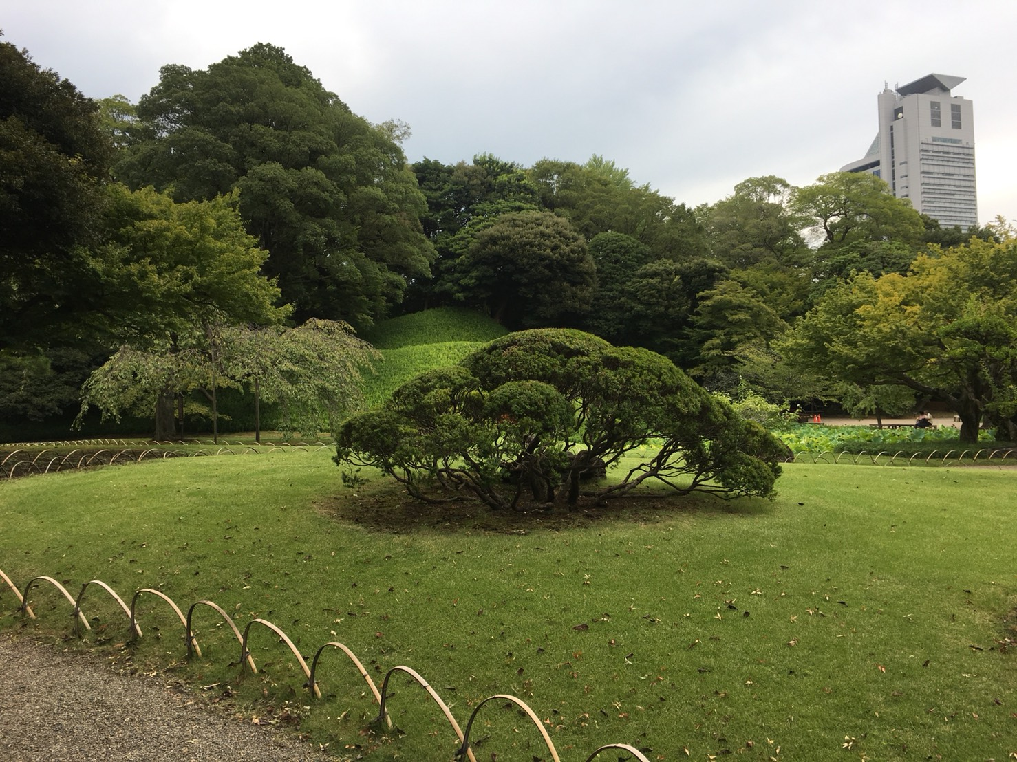 【飯田橋駅】江戸時代の中国趣味豊かな景観で一句「小石川後楽園」の小石川後楽園の庭園2