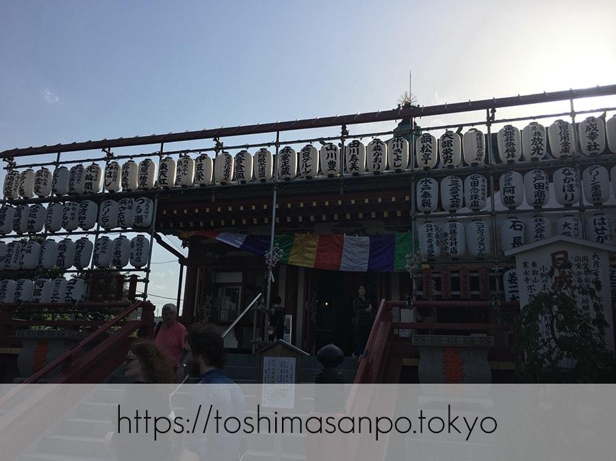 【上野駅】高速上野散歩を提案!大満足の絶品洋食「たいめいけん」のあとに上野動物園で超エンジョイの弁天堂1