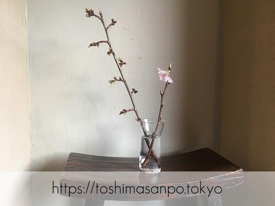 【護国寺駅】何かが生まれる。人と人をつなぐ場所「Gallery TAKAO」のギャラリー内3