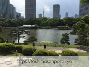 【新橋駅】水上バスにも乗れる!東京湾から繋がる江戸時代の広大な庭園「浜離宮恩賜庭園」の風情。