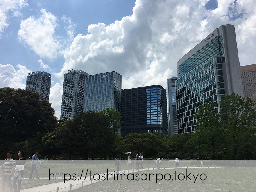 【汐留駅】水上バスにも乗れる!東京湾から繋がる江戸時代の広大な庭園「浜離宮恩賜庭園」の風情。の浜離宮恩賜庭園の景色1