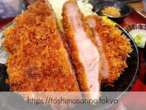 豊島区・池袋駅周辺:みんな違ってみんないい!おすすめの美味しいとんかつ店(随時更新だよ)
