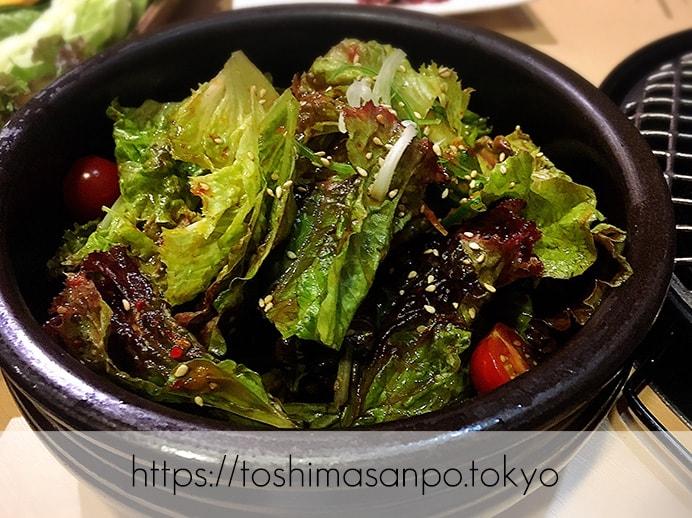 【新宿駅】なにこの初体験チーズキムチチヂミ!極上お肉も激安激うま!牛タンなど激人気店「韓感」のサンチュサラダ